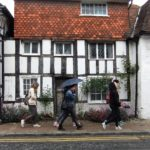 Cultural visit to Steyning