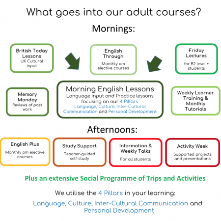 Image describing what goes into adult courses at loxdale